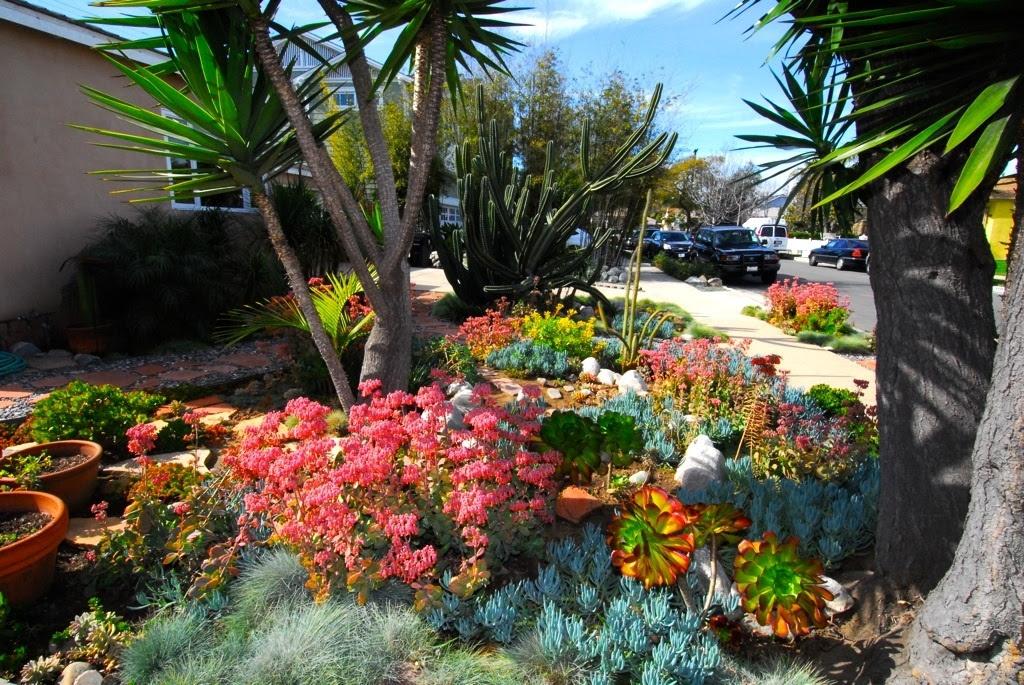 Santa Ana Water Smart Landscapes The City Of Santa Ana