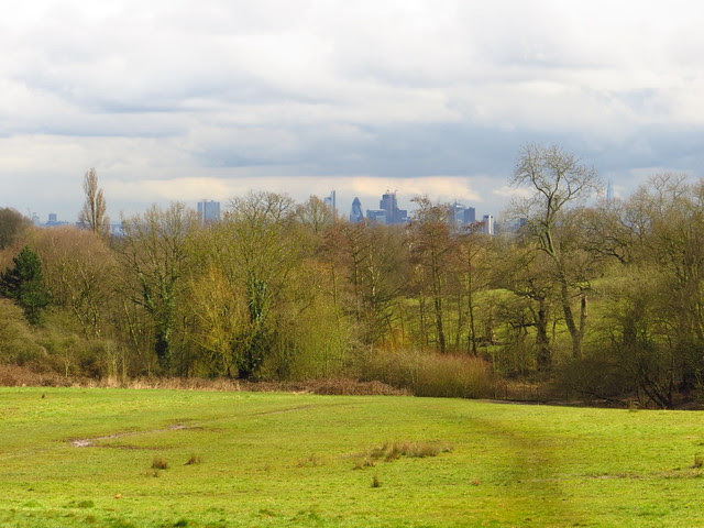 London seen from the Ladies Pond Meadow