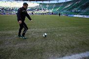 Fatalna murawa na wrocławskim stadionie