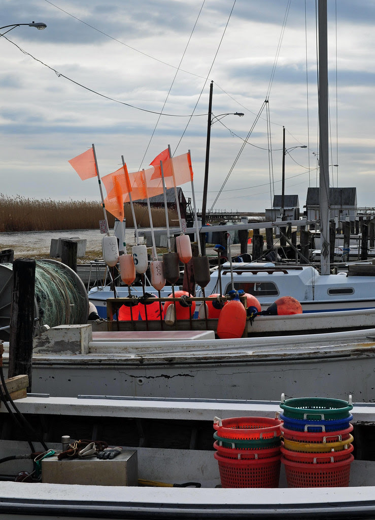 Buckets, Boats and Bouys