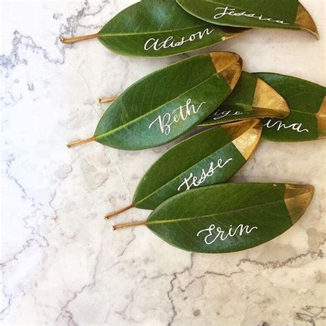 Bunch of 25 Fresh Magnolia Leaves to be used as Place