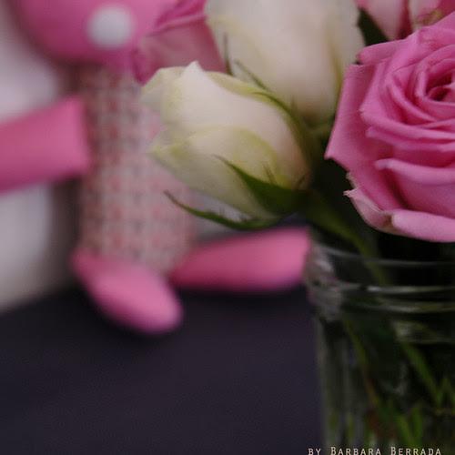 rose0