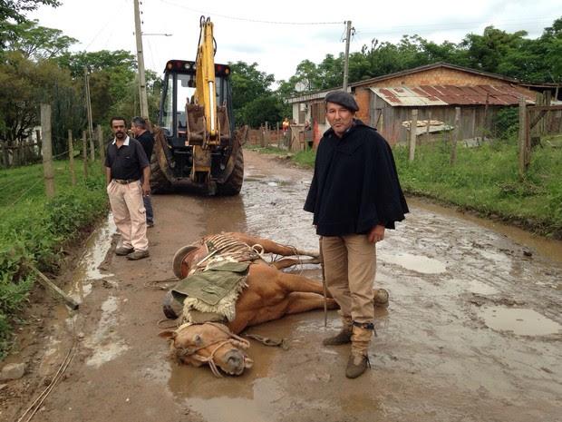 cavalo morto santa maria (Foto: Claudio Vaz/RBS TV)