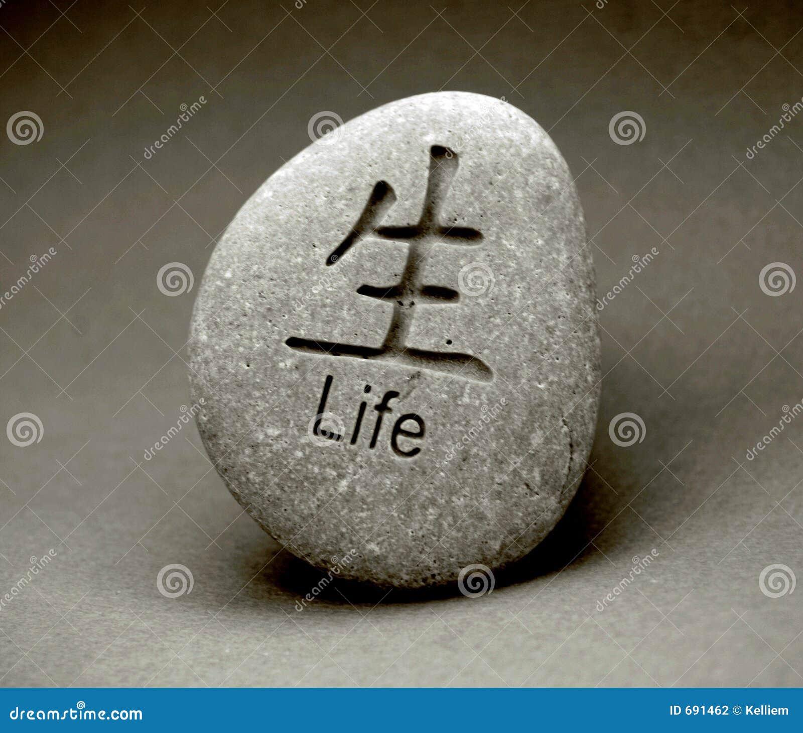 enjoy life 691462