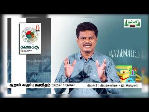 6th Maths இயற்கணிதம் ஓர் அறிமுகம் பருவம் 1 இயல் 2 Kalvi TV