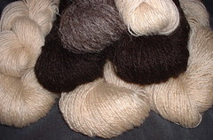 rug yarns March 2007