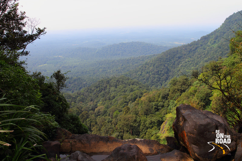 Dense Western Ghats as seen from the Narasimha Parvatha Trekking Route