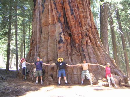Gigantes de California