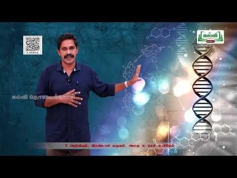 7th Science செல் உயிரியல் அலகு 1 பகுதி2 Kalvi TV