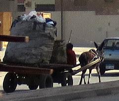 EgyptSoMuchToSee-5