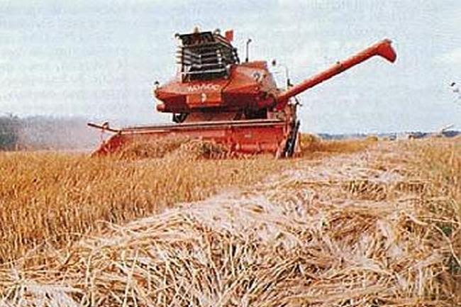 Σε σύντομο χρονικό διάστημα ακαλλιέργητες και χέρσες περιοχές μετατράπηκαν σε μεγάλους σιτοβολώνες