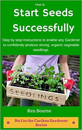How to Start Seeds Successfully