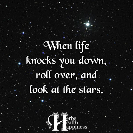 When Life Knocks You Down ø Eminently Quotable Quotes Funny