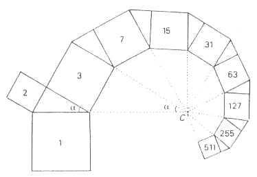 Spirale logaritmica avvolta