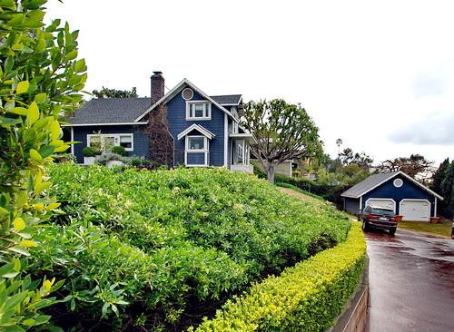 Harry Hay House by Michael Locke