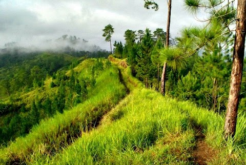 Beauty of Bukidnon - A must visit tourist /  travel destination