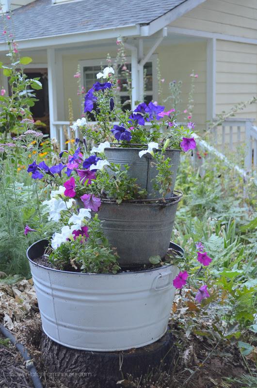 Old Buckets and Petunias www.flowerpatchfarmhouse.com