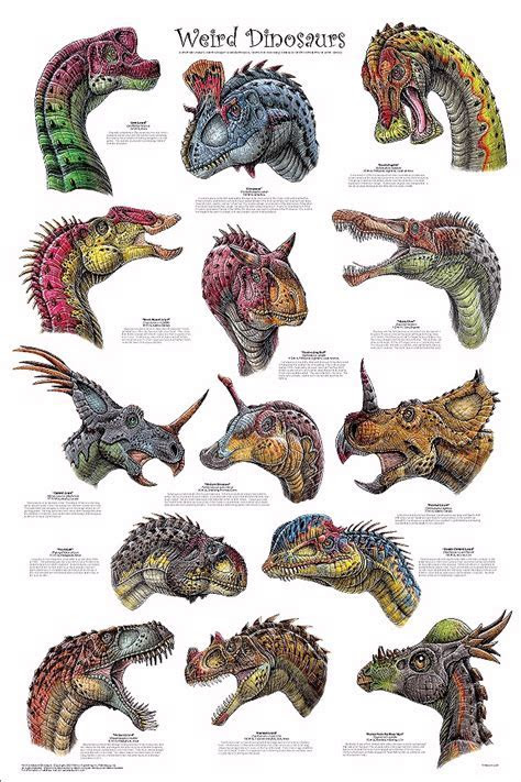 Really Weird Dinosaurs