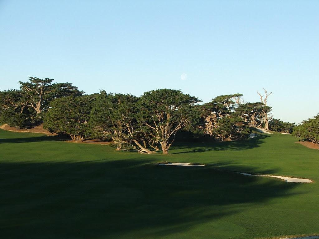 Cypress 14th fwy