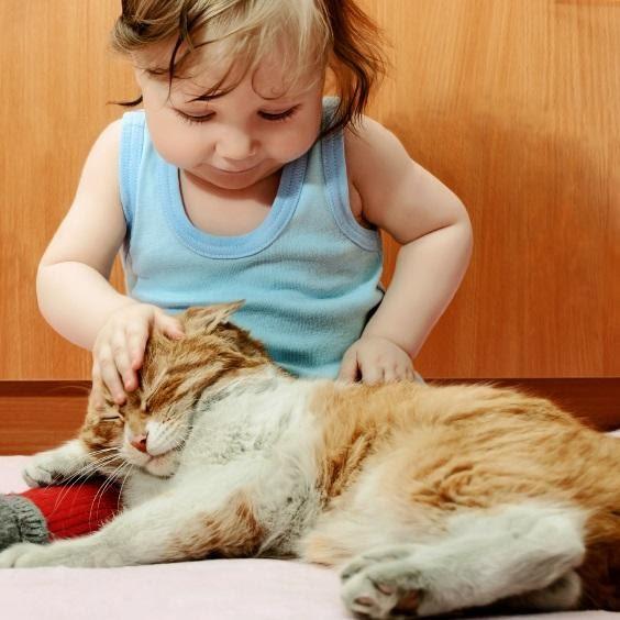 Beneficios para los niños de TENER UN GATO