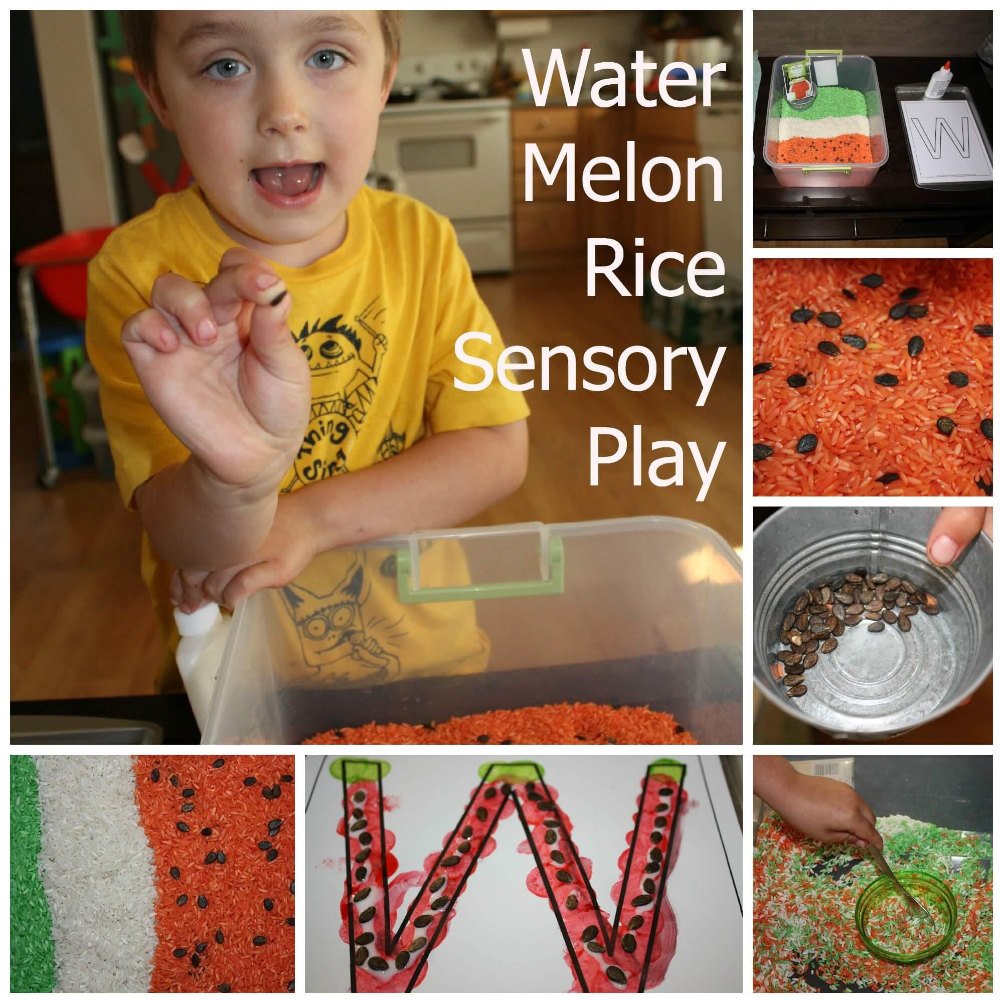 http://littlebinsforlittlehands.com/wp-content/uploads/2013/06/watermelon-rice-bin.jpg