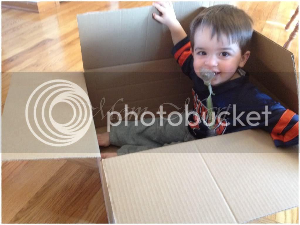 Children in a cardboard box