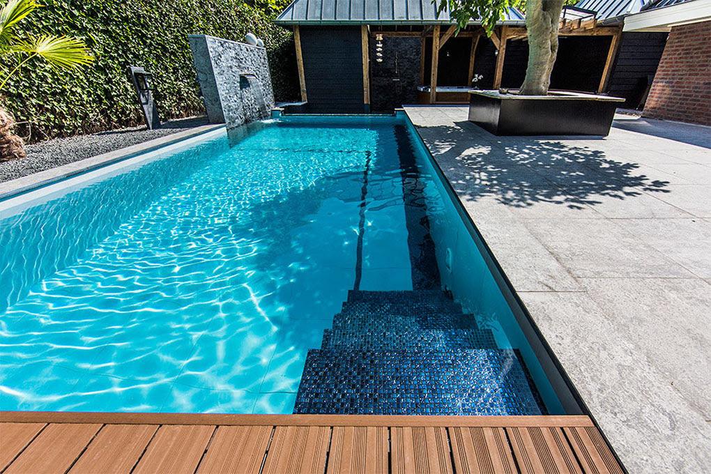 Aquatic Backyard Netherlands Steps Pool