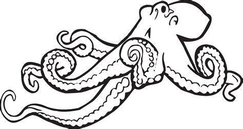 octopus coloring pages preschool  kindergarten