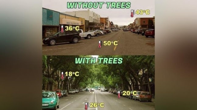 Fact Check: Photos from US, Hungary viral as two streets of same city with huge temperature difference https://ift.tt/3rSTaiw