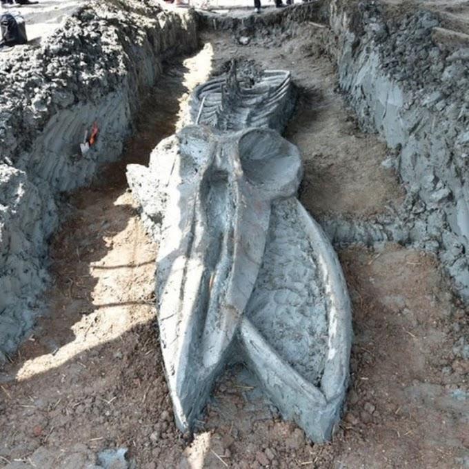 В Таиланде обнаружили огромный скелет кита, возрастом до 5 тысяч лет