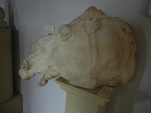 DSCN9152 _ Institut für Klassische Archäologie, Universität Graz, 9 October