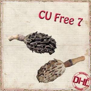 Dhl_CUfree7