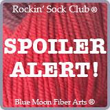 Rockin' Sock Club Spoiler Alert