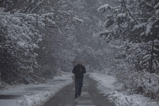 Fresh Snow Spell In Kashmir From Today