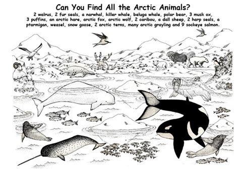 spot  arctic animals inuit art pinterest
