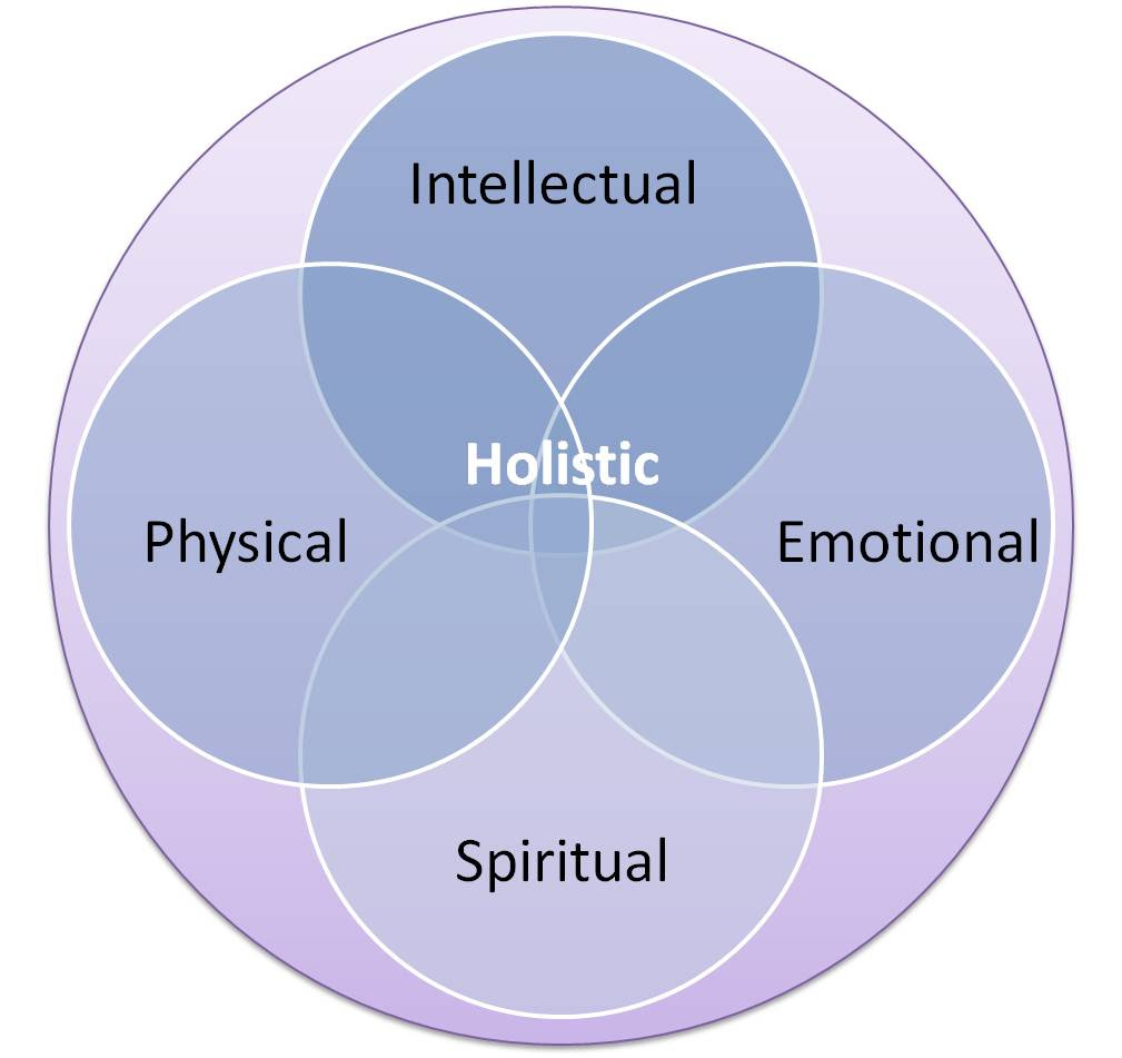 Image result for What does Holistic Health Care Mean?