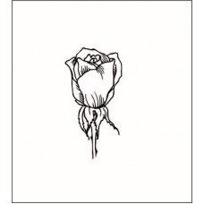 Роза  1,7 см х 3,3 см