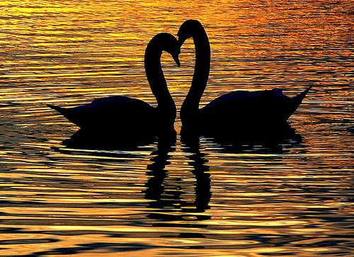 Cerpen Cinta Terbaru 2013