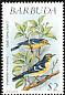 Barbuda Warbler Setophaga subita