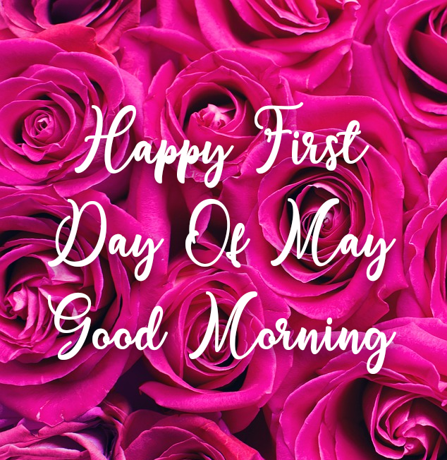 Happy First Day Of May Good Morning Pictures Photos And Images For