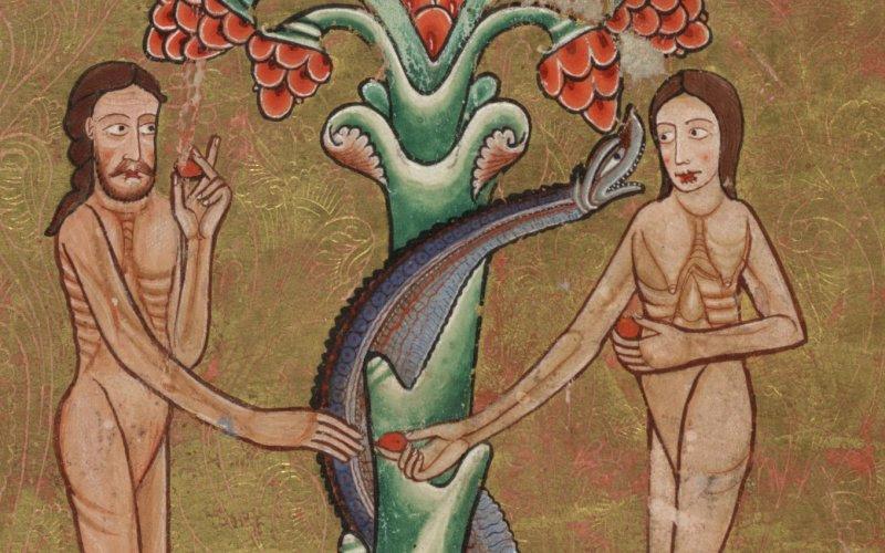 Risultati immagini per L'Albero della conoscenza del Bene e del Male