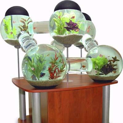 Fish Metropolis | 10 Crazy Aquariums | This Old House