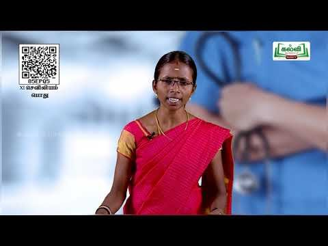 11th Nursing General ஆக்சிஜன் அளித்தல் - வழிமுறை அலகு1 பகுதி 1 Kalvi TV