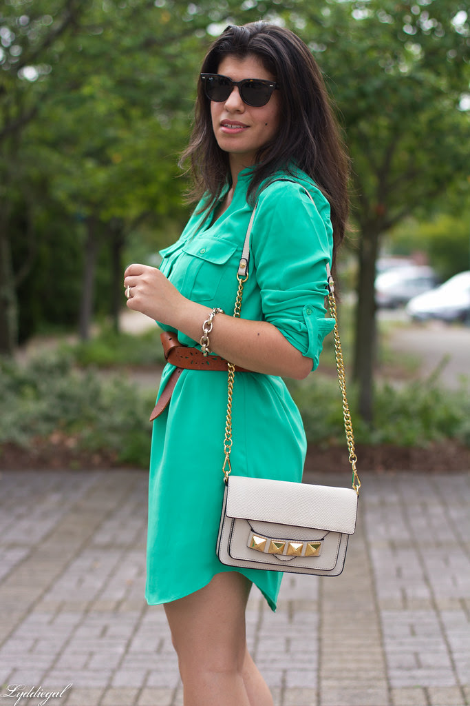 shirt dress and leopard wedges-1.jpg