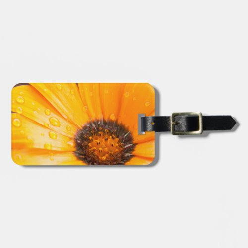 Wet Spring Flash African Daisy Photograph Bag Tags