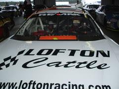 Lofton Cattle