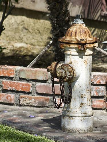 Fire hydrant yard art