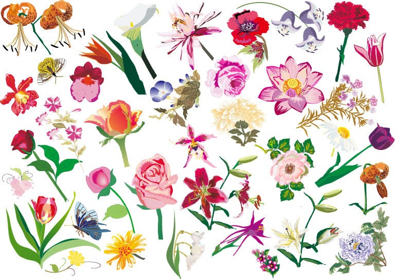 Various Flowers Vector Image Set   Free Vector Graphics ...