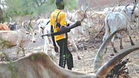 Fulani Herdsmen Kill RCCG Pastor In Kaduna