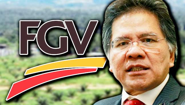 Image result for FGV jala